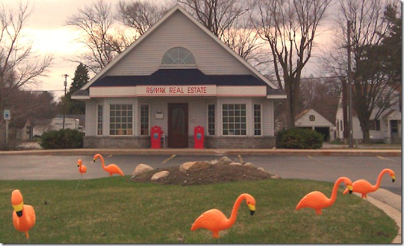 ReMaxFlamingoes